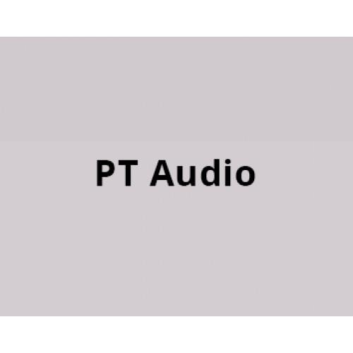 pt audio